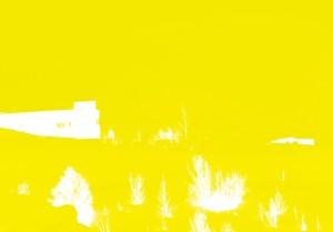DSC_4286 gul og græn